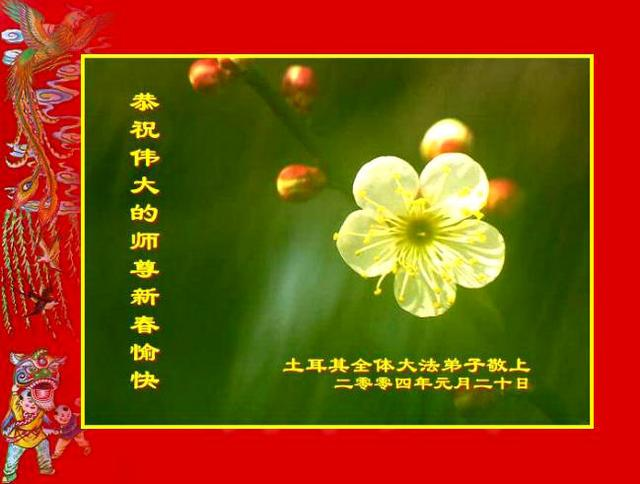 all dafa practitioners in turkey respectfully wish our teacher a happy chinese new year