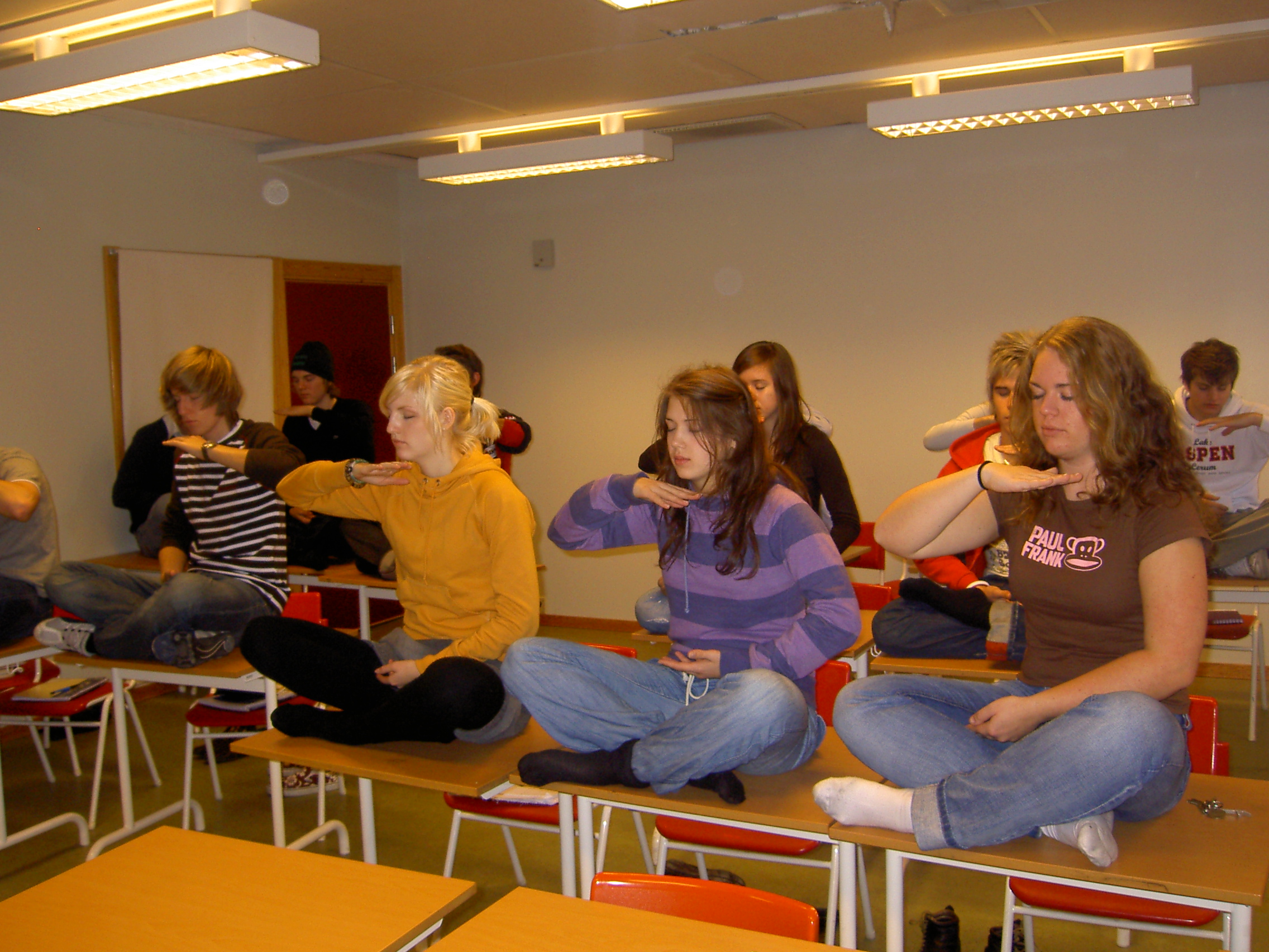 Sweden: High School Students in Lerum Learn about Falun Gong
